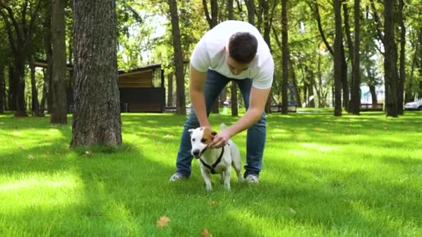 Young man having fun with companion dog Jack Russell outside