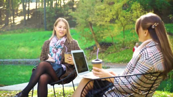 Young women having business meeting in park
