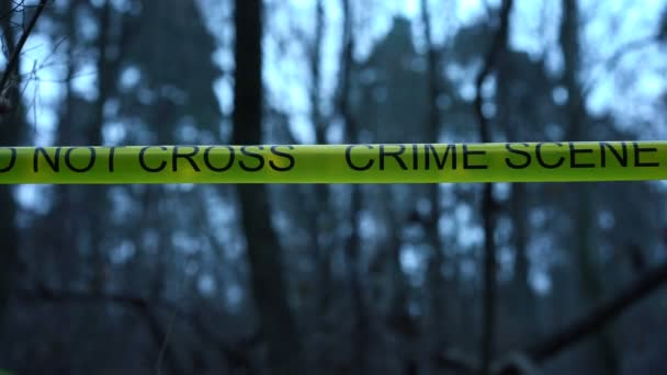 Crime Scene In The Woods Forensic Analyst Working With Evidence At Murder Site Stock Video C Synthex 268616618