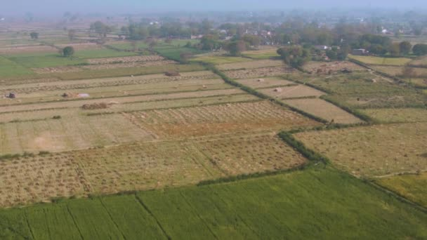 India picturesque beautiful agricultural fields, 4k aerial drone footage