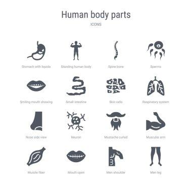 set of 16 vector icons such as men leg, men shoulder, mouth open