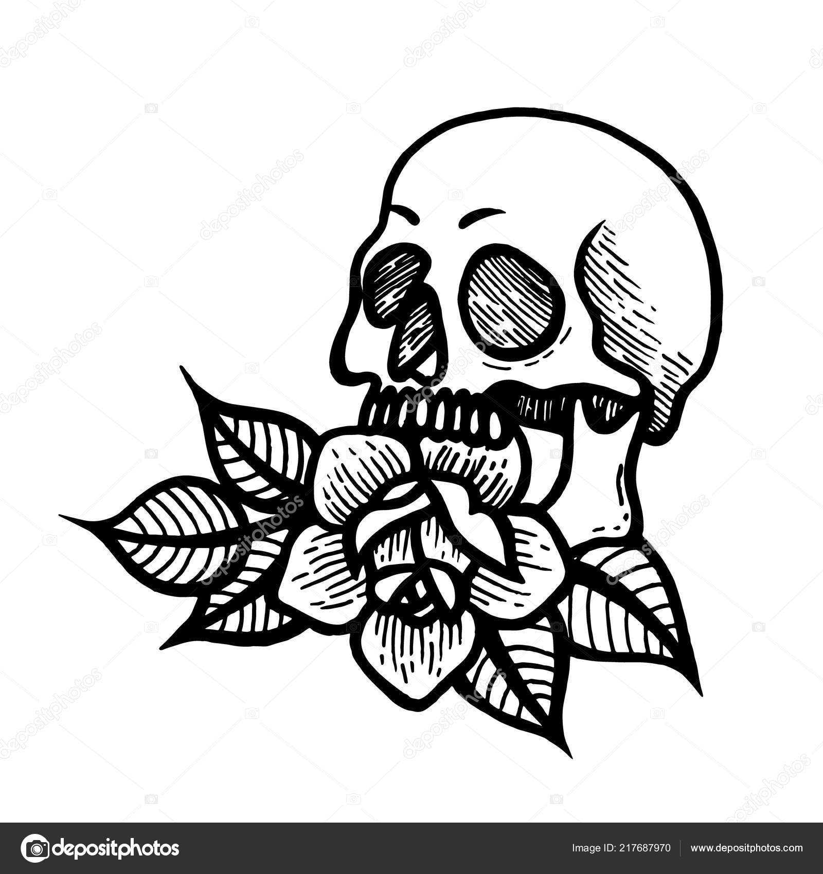 Rose Tattoo With Skull Roses Isolated Vector Illustration Stock