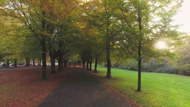 Avenue stromů podél promenády na podzim, Clifton, Bristol, Anglie