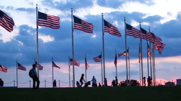 scenic view of USA national flags and tourists against dramatic sky, Washington, USA