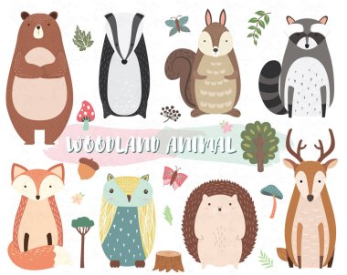 Cute Woodland Animal Collection Set. stock vector