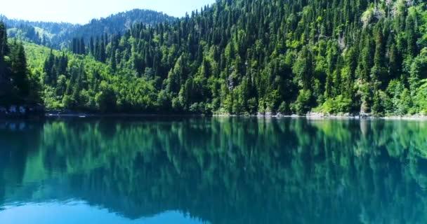 Repülő egy gyönyörű zöld tó felé, a barna zöld magas fenyők a part közelében.