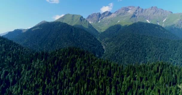 Hory na skalnatých kavkazských horách pokrytých hustým borovicovým lesem s trubicovou rezervací z Abcházie Ritsa relikty