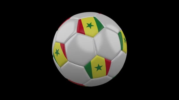 Soccer ball with Senegal flag colors rotates on transparent background, 3d rendering, prores 4444 with alpha channel, loop