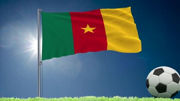Kamerun praporek a fotbalové rolky