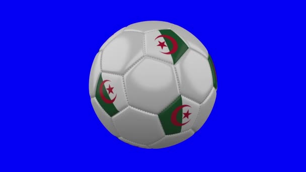 Soccer ball with Algeria flag on blue chroma key background, loop