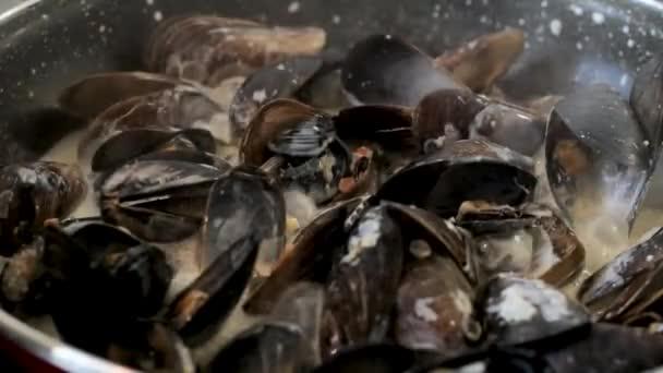 Muscheln in der Pfanne aus nächster Nähe kochen