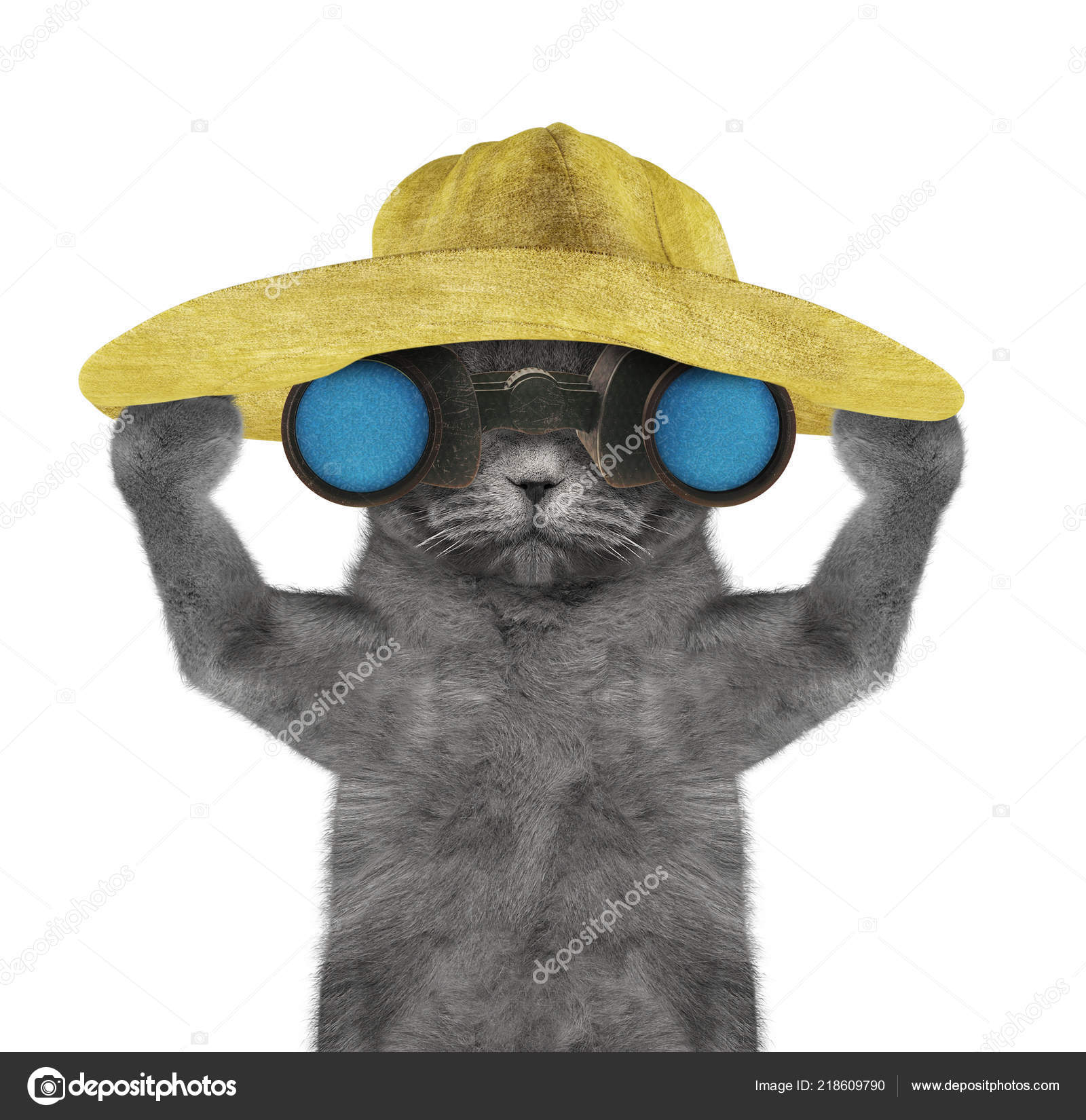 e95e93d9 Cute cat in a hat looking and observing with binoculars -- isolated on  white background — Photo by ...