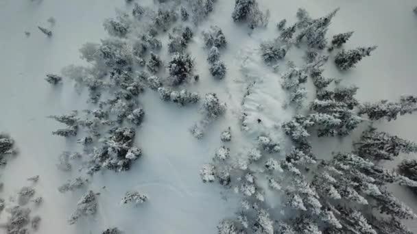 Drohne Freerider Snowboarder Fahrt im Pulverschnee