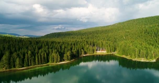 Luftaufnahme von blauem See und grünen Wäldern an einem sonnigen Sommertag in schwarzem See, Montenegro