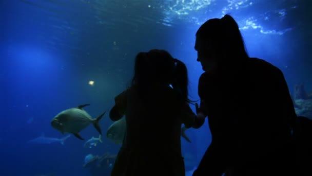 Matka s dítětem Cutie jsou na návštěvě Oceanarium na den matek. Matka ukazuje dívka tento krásný a zajímavý svět. HD, Rodina, den matek, životní styl.