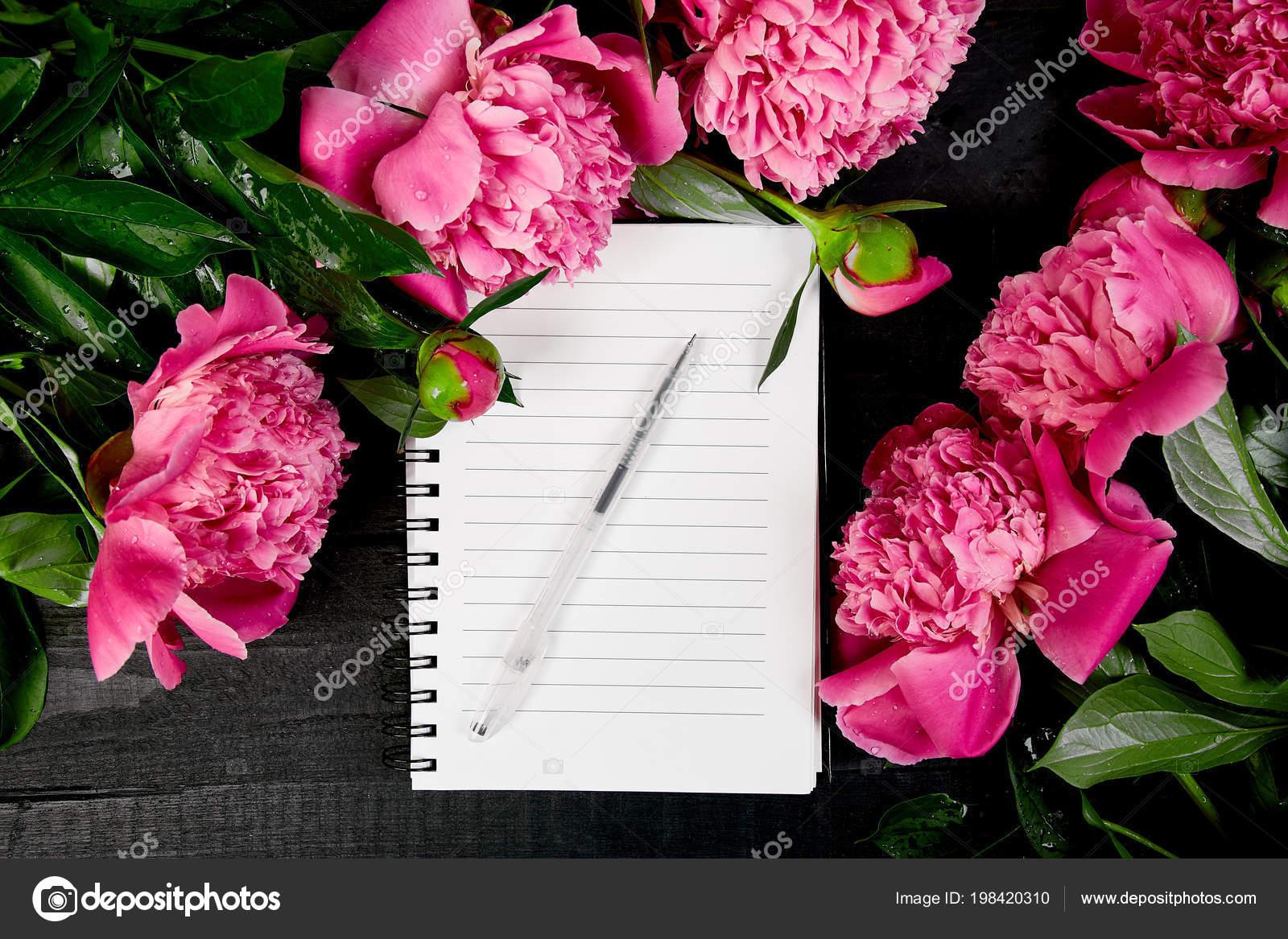 Beautiful pink peony flowers black background note diary planing beautiful pink peony flowers black background note diary planing list stock photo mightylinksfo