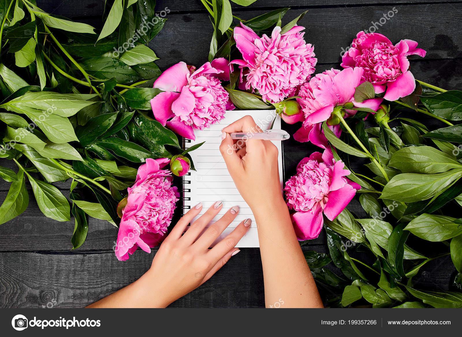 Die Hand Der Frau Schreiben Tagebuch Oder Brief Hinweis