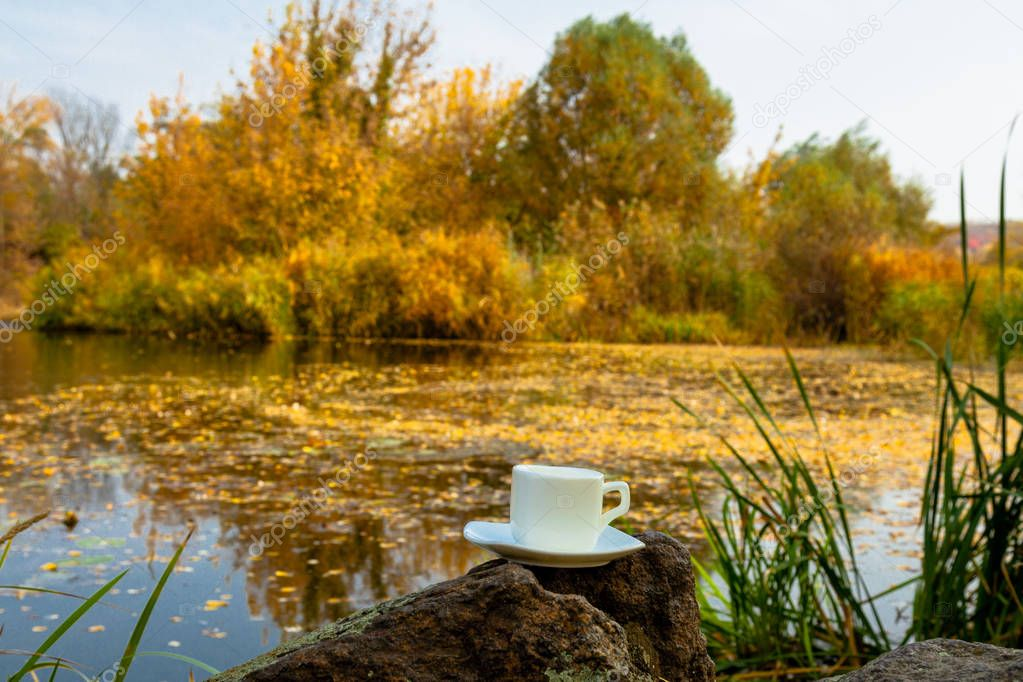 on the bank of the river a cup of coffee stands on a stone surrounded by falling yellow leaves on dark water