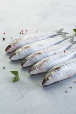 Fish, fresh mullet, gray background, catch, close-up