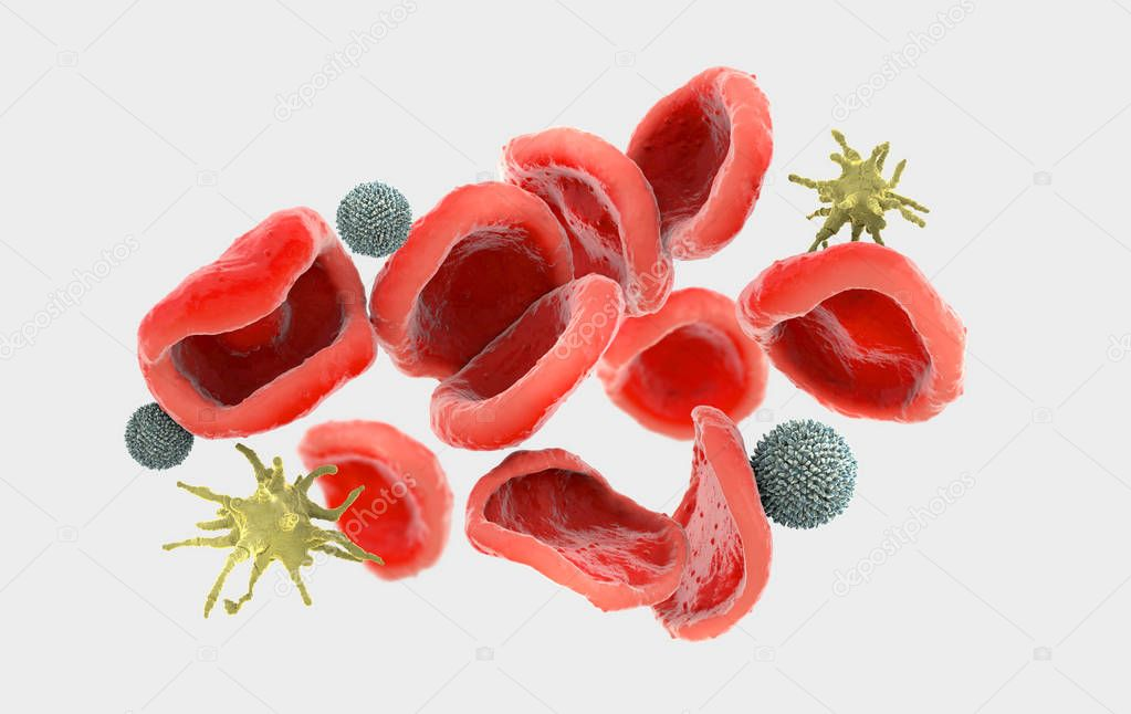 3d illustration of very closely observed red, called erythrocytes, white blood cells, called leukocytes and platelets, called thrombocytes in the human body