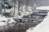 Zimní krajina s rybníkem ve sněžení. Lesní přírody pokryté sněhem. Zimní zasněžené počasí. Zasněžené stromy, krásná zmrazené rybník. Zimní les