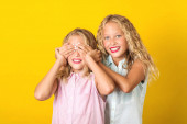 Happy sisters twins smiling and having fun together. Summer fashion. Beautiful girl friends posing over yellow background.