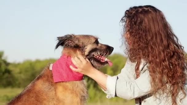 fröhliche junge kaukasische Frau mit langen lockigen Haaren vergnügt sich im Sommer mit ihrem Hund im Park.