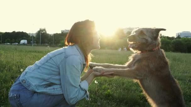 Šťastná mladá kavkazanka se psem v parku v době západu slunce.