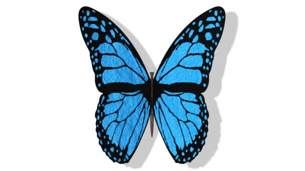Videos. 3D illustration. Colorful butterfly flies with open wings on a white background.