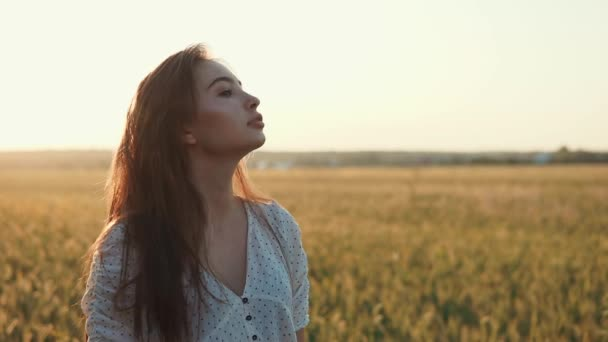 Pretty brunette girl is standing alone on rye field in summer sunset time