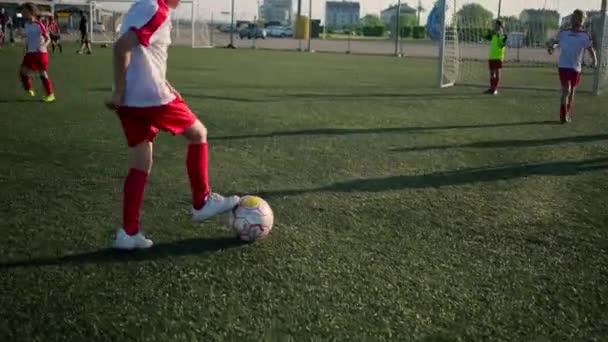 Skupina malých fotbalíček školení na hřišti
