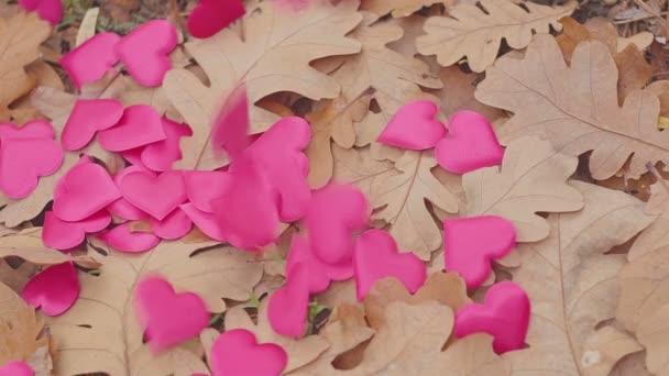 rotes Herz fällt auf Herbstblätter. Liebender Herbsthintergrund