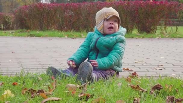 little boy playing with autumn leaves in autumn park slow motion