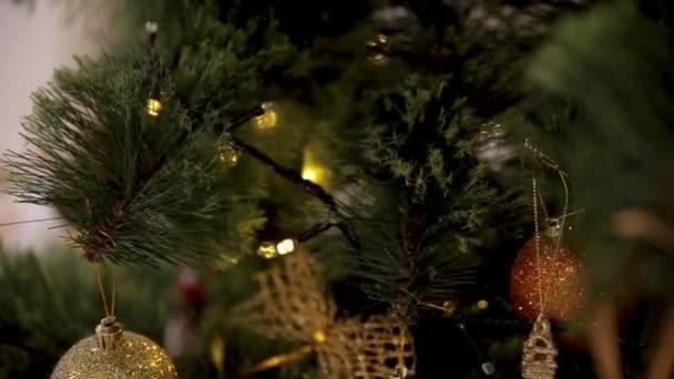 Svátek vánoční. Krásně zařízený dům s vánoční stromeček. Detailní barevné cetka visící z ozdobený stromeček. Full Hd