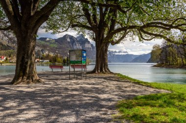 Beautiful park on the banks of Walensee lake on a sunny spring day. Weesen, Switzerland.