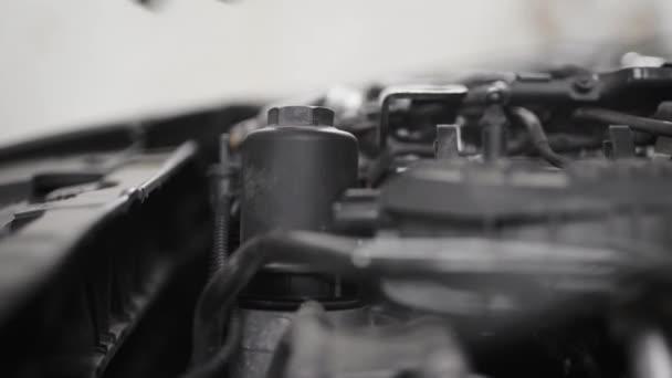 Zár-megjelöl szemcsésedik-ból egy szerelő, autó motor, nyitott hood olaj ellenőrzése.
