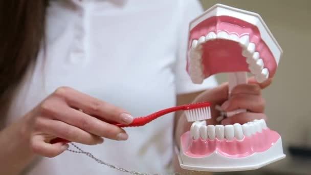 Dívka v zubní ordinaci ukazuje jak si čistíte zuby
