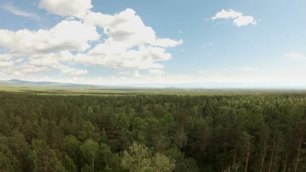 Aerial drone shot over the forest. Drone flies forward above the treetops