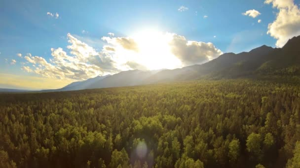 Aerial view of amazing mountain landscape at sunset. Sun lights up the treetops