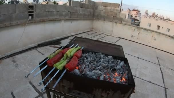 Shish kebab on skewers. Food grilling on barbecue. Preparing tasty meat barbeque on skewers.