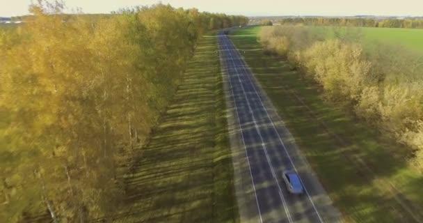 Letecký pohled na silnici a na podzim stromy. 4k