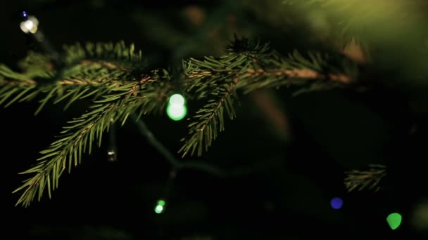Decorative garland with fairy-lights close-up