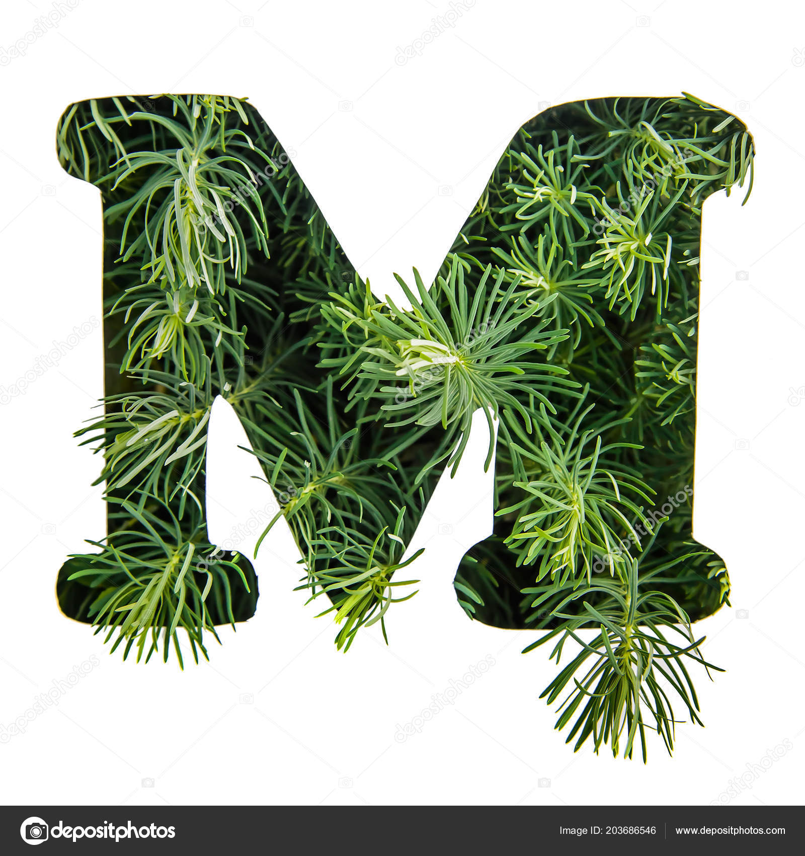 Beautiful Letter English Alphabet Made Green Grass Portulac Isolate