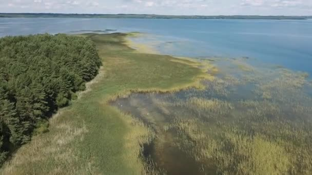 Aerial drone video over a natural shallow in the middle of the lake