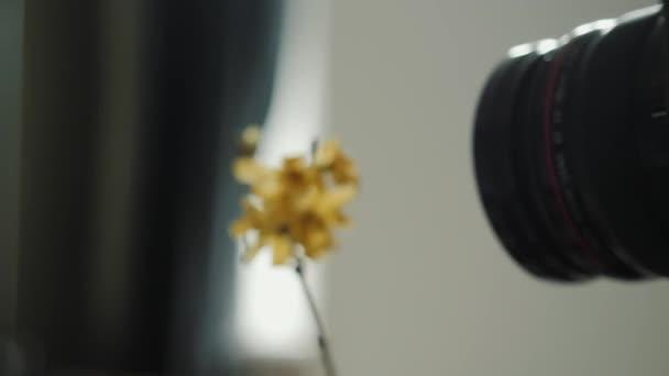 Fotograf pořizuje fotografie ve studiu.