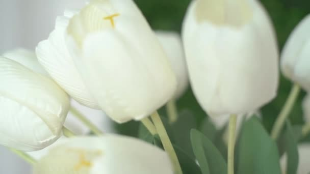 4K Tulip Flowers In Vase