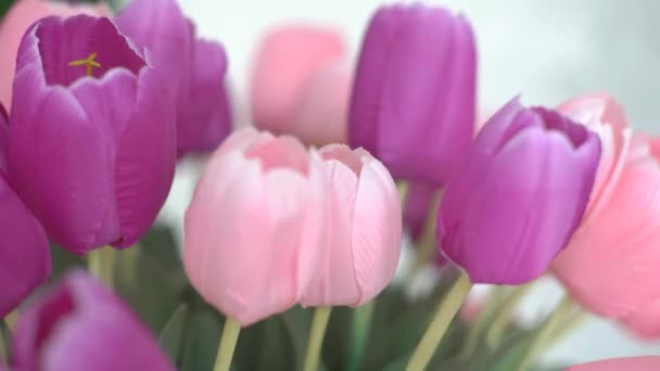 4K Dolly Shot Of A Romantic Vase Of Pink Tulips In A Modern Design Living Room.