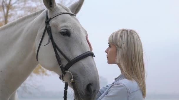 Lassított egy nő cirógatja a ló orra finoman és úgy néz ki a szemét