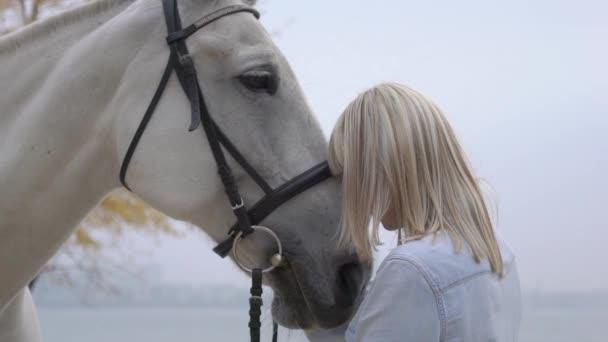 Lassú mozgás fiatal szőke nő simogató és ölelgetés Horse