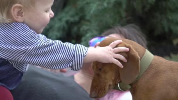 Pomalý pohyb dětská holčička Hučeje štěně